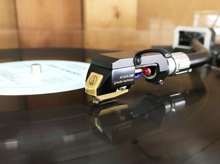 レコードの静電気から解放された埃.jpg