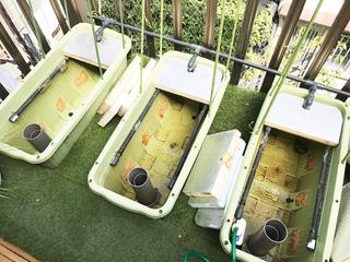 水耕栽培装置の掃除.jpg